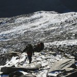How to train for High Altitude Trekking?