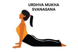 Adho Mukha Svanasana-4 - Copy