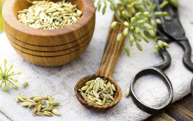 Benefits of Fennel Seeds 2