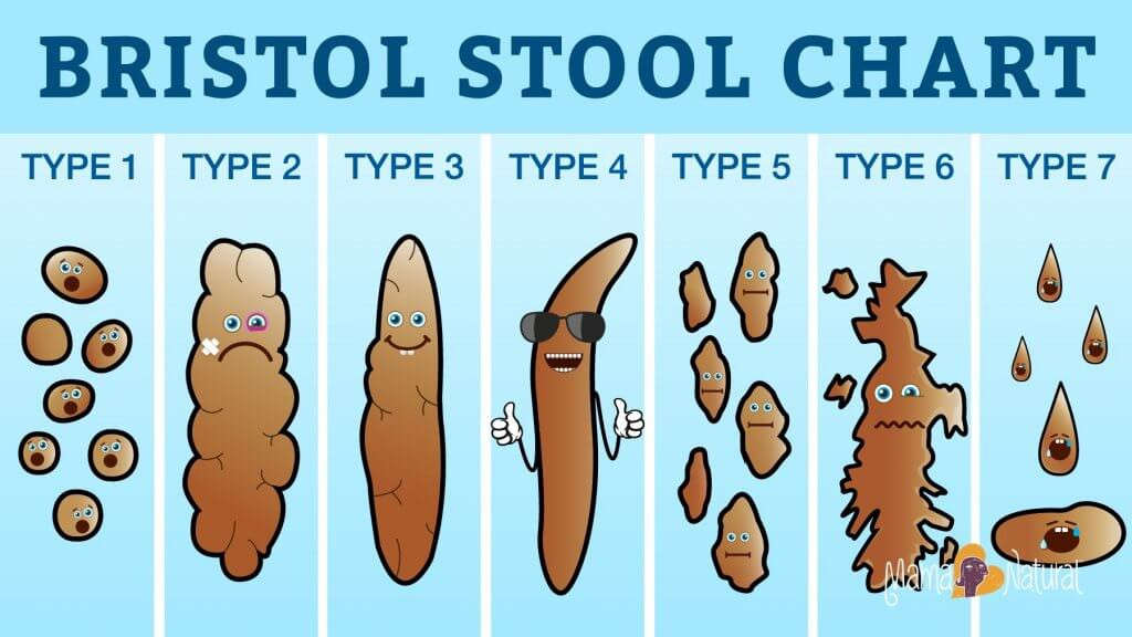 Bristol-Stool-Chart-What-Your-Poop-Says-About-Your-Health-Mama-Natural-1024x576