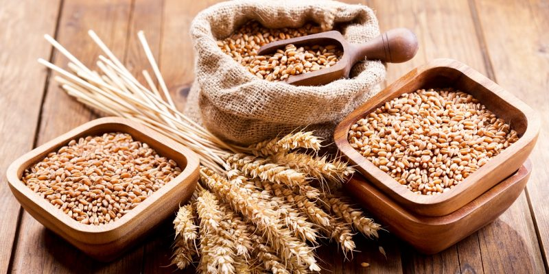 Do Grains Cause a Leaky Gut?