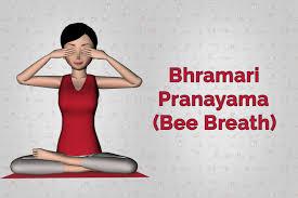 bee breathe