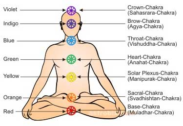 The Seven Chakras in human body
