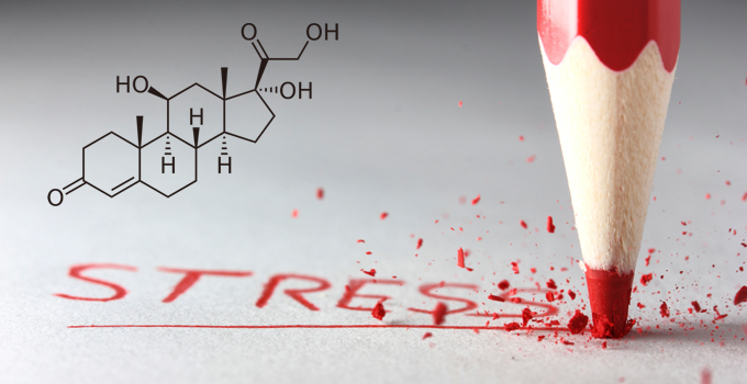 cortisol the stress hormone
