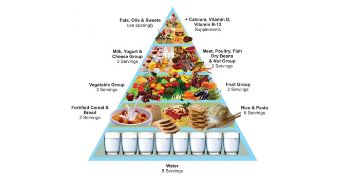 Food Pyramid – Did you Know? A guide to healthy eating with the ...