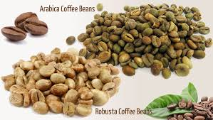 Super foods that cause weight loss picture 3