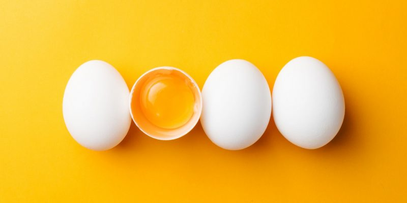 Egg – An Antidote For The Immune System