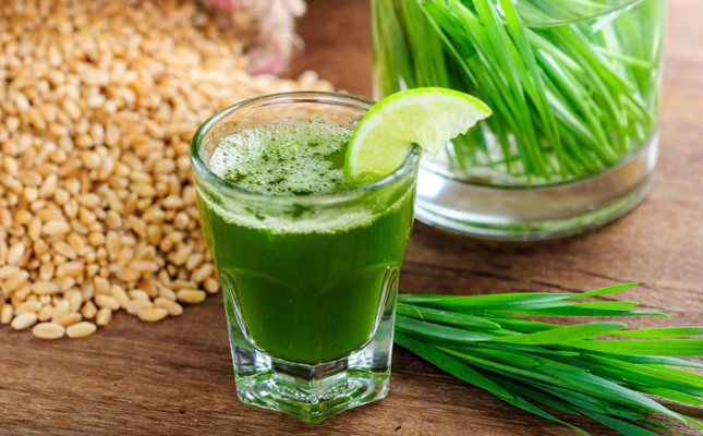 All about Wheat Grass and its benefits